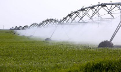 Assises de l'agriculture : le président Bouteflika appelle au développement des industries agroalimentaires
