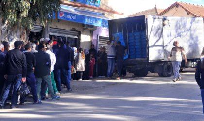 Alioui: «Le ministère du Commerce doit sévir au niveau de la distribution du lait en sachet»