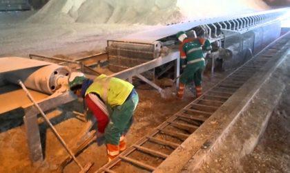 Ciment: LafargeHolcim Algérie effectue sa troisième exportation vers la Gambie