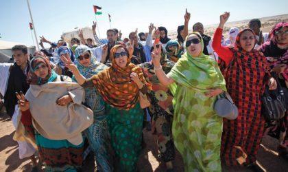 Tournée en Italie du film «Fusils ou peinture : la lutte non violente du peuple sahraoui»