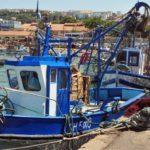 sardine boycott citoyens