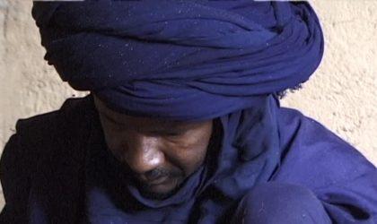 Mali : une quarantaine de civils touareg massacrés près du Niger