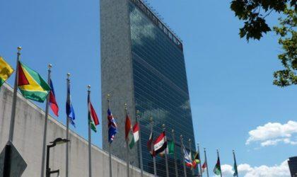 L'Algérien Noureddine Amir élu président des Comités des droits de l'Homme de l'ONU