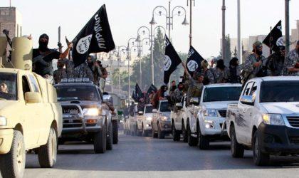 L'Iran au Pakistan: «Washington a installé Al-Baghdadi et Daech à vos frontières»