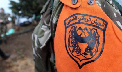 Deux terroristes capturés par l'ANP à Tamanrasset
