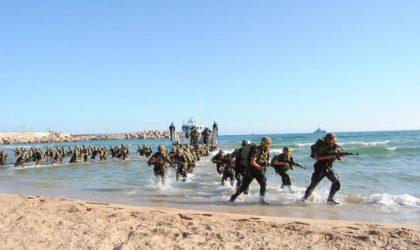 Impressionnant exercice des forces combinées de l'ANP à Oran