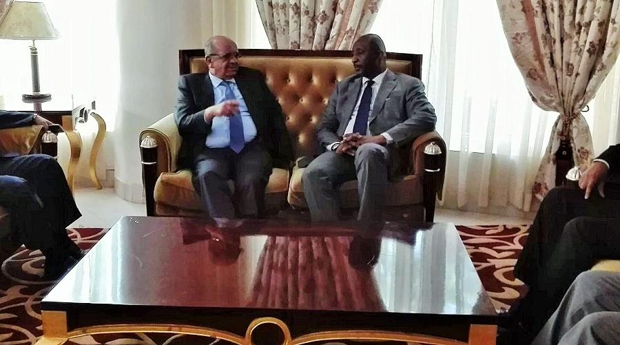 13e session du Comité bilatéral stratégique algéro-malien