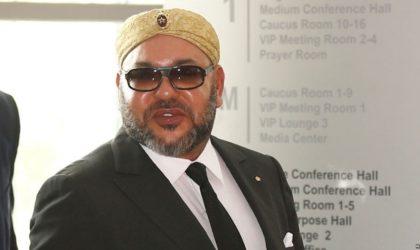 Prétendue relation Hezbollah-Polisario : un diplomate arabe ridiculise Mohammed VI