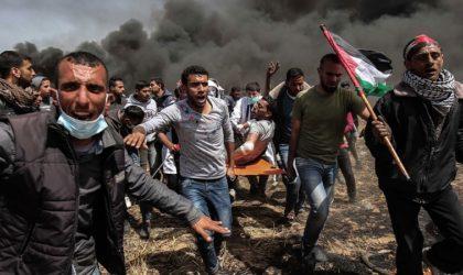 Massacres de Ghaza: l'Algérie appelle le Conseil de sécurité de l'ONU à assumer ses responsabilités
