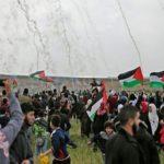 Palestine révolutions