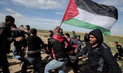 Ghaza : Amnesty dénonce une «violation abjecte» des droits de l'Homme