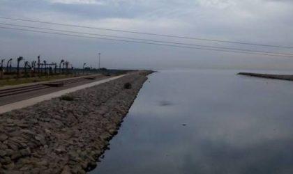 Chute d'un véhicule touristique dans les eaux de Oued El-Harrach