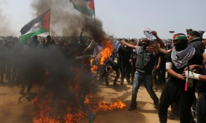 Palestine trahie