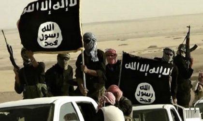L'Iran au Pakistan : «Washington a installé Al-Baghdadi et Daech à vos frontières»