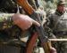 Vaste ratissage dans les monts de Bouira: six abris pour terroristes détruits