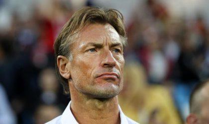 Des supporters algériens «encerclent» l'entraîneur du Maroc à Moscou