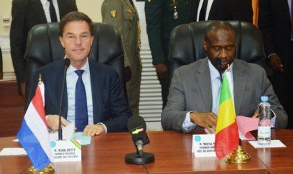 Mali : les Pays-Bas lâchent la Minusma