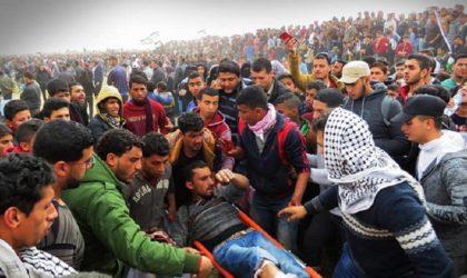 Les forces d'occupation israéliennes ont tué 131 Palestiniens depuis le 30 mars