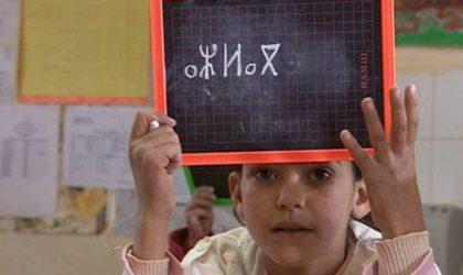 Académie de la langue amazighe : couronnement du processus de l'officialisation de tamazight