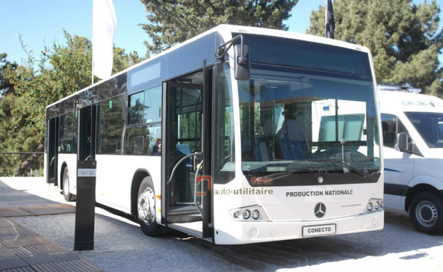 Mercedes, Bus Mercedes