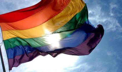 L'ambassade de Grande-Bretagne hisse le drapeau LGBT : les Algériens choqués