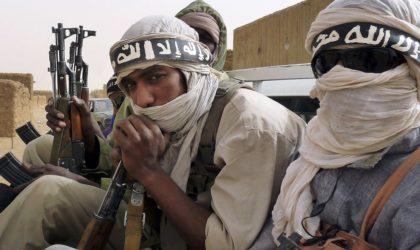 Les terroristes qui se sont rendus dans le Sud ont une double nationalité