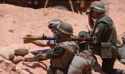 Reddition de quatre terroristes à Tamanrasset