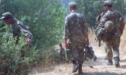 Un élément de soutien aux groupes terroristes arrêté à Tébessa