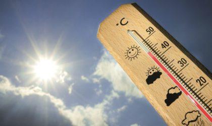 BMS: la canicule persistera mercredi dans certaines wilayas du Sud