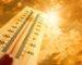 Vague de chaleur sur le Sahara central, le Sud-Ouest et les Oasis jusqu'à samedi