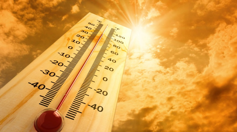 chaleur vague