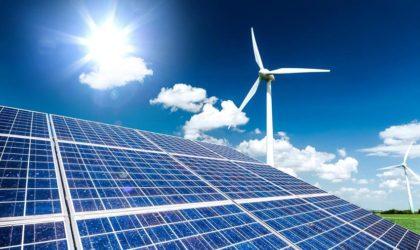 Guitouni annonce un ambitieux programme de développement des énergies renouvelables