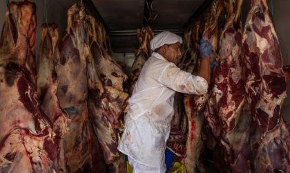 Revente de la viande liée à l'affaire de cocaïne : nouveau scandale ?
