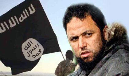 Tunisie : l'ex-garde du corps de Ben Laden remis en liberté