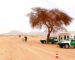 Braquage de Debdeb : l'ANP récupère 29 millions de dinars