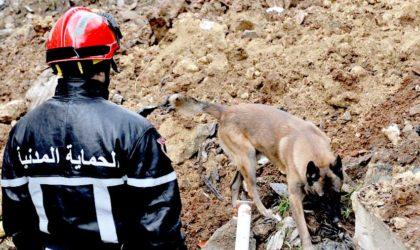 Aïd El Adha : la Protection civile appelle à la prudence