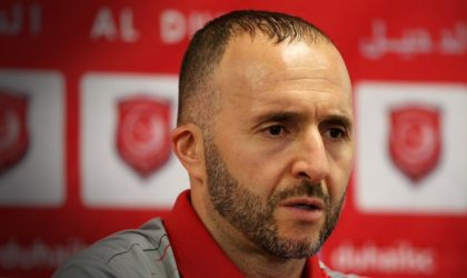 Djamel Belmadi officiellement entraîneur de l'équipe nationale de football