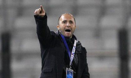 Best Fifa Awards : Belmadi nominé au titre de meilleur entraîneur de l'année