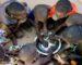 L'Algérie octroie une aide humanitaire d'urgence au Niger