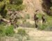 Un élément de soutien aux groupes terroristes arrêté à Tizi Ouzou
