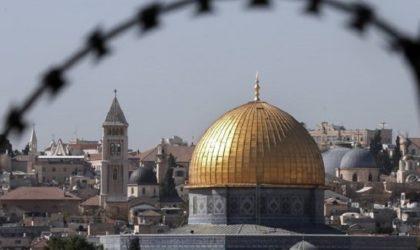 Palestine : le réseau des hôpitaux d'El Qods appelle à l'aide