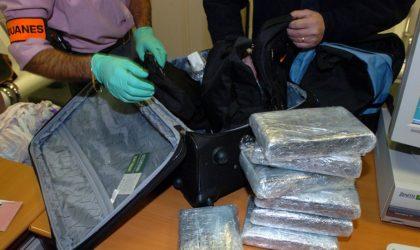 France : 17 tonnes de cocaïne saisies en un an