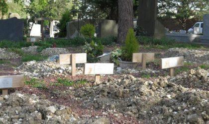 Une association interpelle Macron sur les cimetières français en Algérie