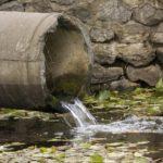 choléra eaux usées