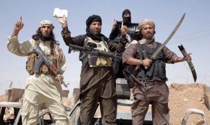 Selon un rapport américain : Daech et Al-Qaïda incapables d'agir en Algérie