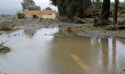 Intempéries à Tébessa : un mort et plus de 50 véhicules emportés par les crues