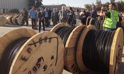 Condor : une délégation d'hommes d'affaires européens visite l'Enicab