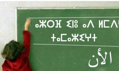 Défense des langues populaires : le cas algérien
