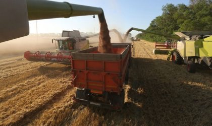 Une source autorisée explique pourquoi l'Algérie a décidé d'acheter le blé russe