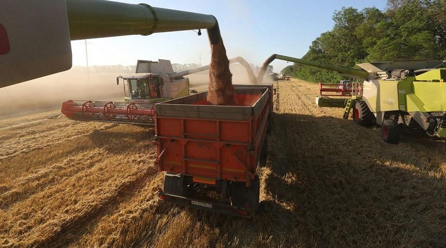 blé russe